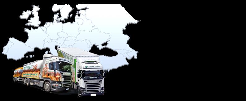 Noi abbiamo la nostra flotta di camion pronti per il trasporto di pellet fino agli estremi confini d'Europa. Eseguiamo gli ordini prontamente e in tempi di consegna garantiti!